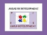 PIES.Areas.of.Development